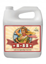 Advanced Nutrients B-52 Fertilizer Booster 10L