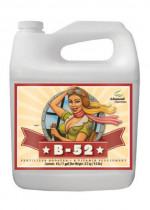 Advanced Nutrients B-52 Fertilizer Booster 5L