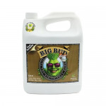 Advanced Nutrients BIG BUD akcelerator kwitnienia do kokosu 4L