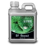 B1 BOOST CYCO 1L - korzenie, zdrowy wzrost