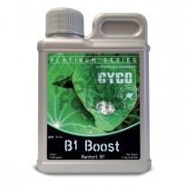 B1 BOOST CYCO 250ML