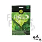 HALO PLANT BOOST - saszetka 2,5g - zwiększa fotosyntezę, wydajność i jakość