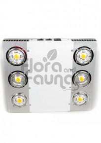 LAMPA LED SPECTROLIGHT EXPLOSION 800, FULL CYCLE, 800W, COB CITIZEN, SOCZEWKA 120°