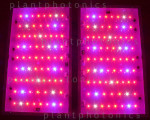 PANEL LED - PLANTPHOTONIC 280W (1000W HPS) wer. 2.1 4tryby pracy