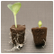 ROOT!T Stock Plant Tonic 125ml - Wzmacnia roślinę przed klonowaniem