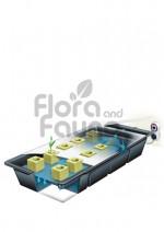 SYSTEM HYDROPONICZNY NFT GRO-TANK, NUTRICULTURE, 60L, 152,5x48,5xh19cm