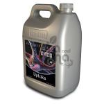 UPTAKE CYCO 5L - lepsze wchłanianie substancji odżywczych